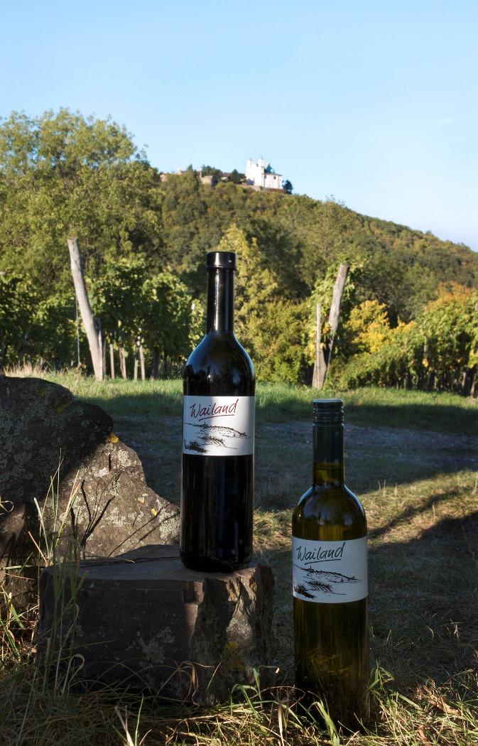 Wein pur - Martina Konrad_Murphy.jpg